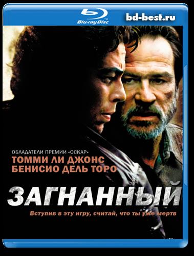 3d фильмы купить на жестком диске