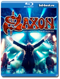 Saxon: Let Me Feel Your Power  (Blu-ray,блю-рей)