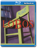 Los Lobos - Kiko Live - chicano rock, roots rock, latin rock, blues rock 2006