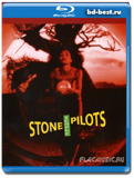 Stone Temple Pilots: Alive in the Windy City ( Alternative rock, hard rock, grunge)