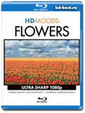 HD MOODS FLOWERS (Blu-ray, блю-рей)