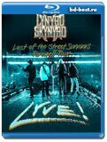 Lynyrd Skynyrd - Last Of The Street Survivors Farewell Tour Lyve (Blu-ray,блю-рей)